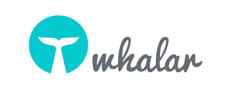 Whalar Names Bob Greenberg as New Vice Chairman